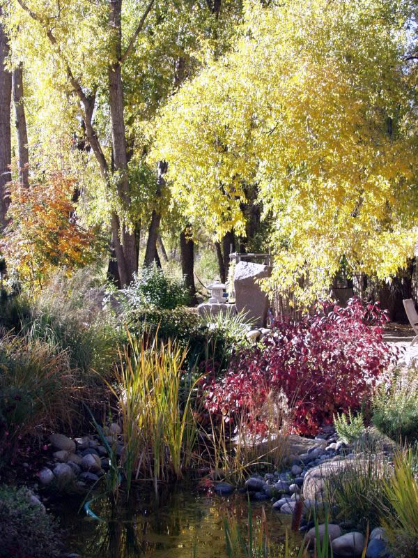 Charles Seha Professional Landscape Designer in Rochester, Minnesota -  Plants, gardens, horticulture for Homes and Businesses